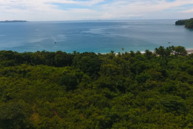 Beachfront Property For Sale, Isla Del Rey, Pearl Islands, Las Perlas, Panama