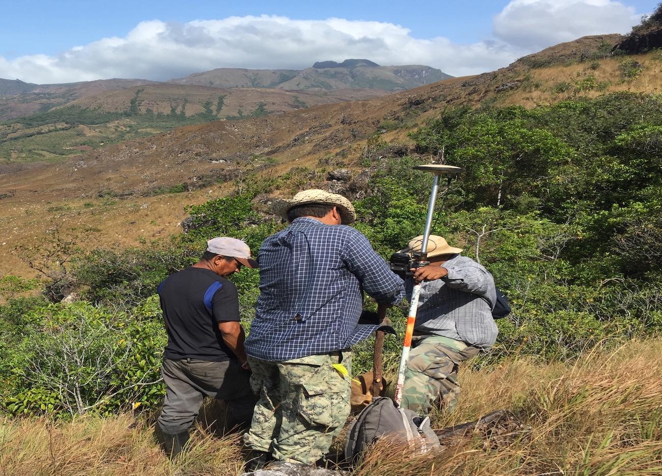 Licensed Surveyors
