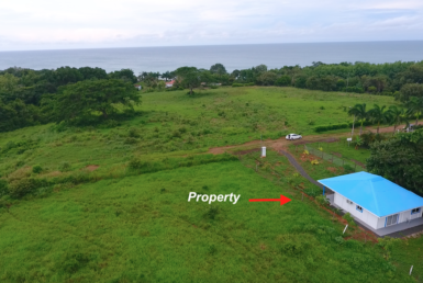 Ocean View Property For Sale Playa Toro, Pedasi, Los Santos, Panama